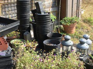 Plants, stacks of garden pots, and metal lanterns